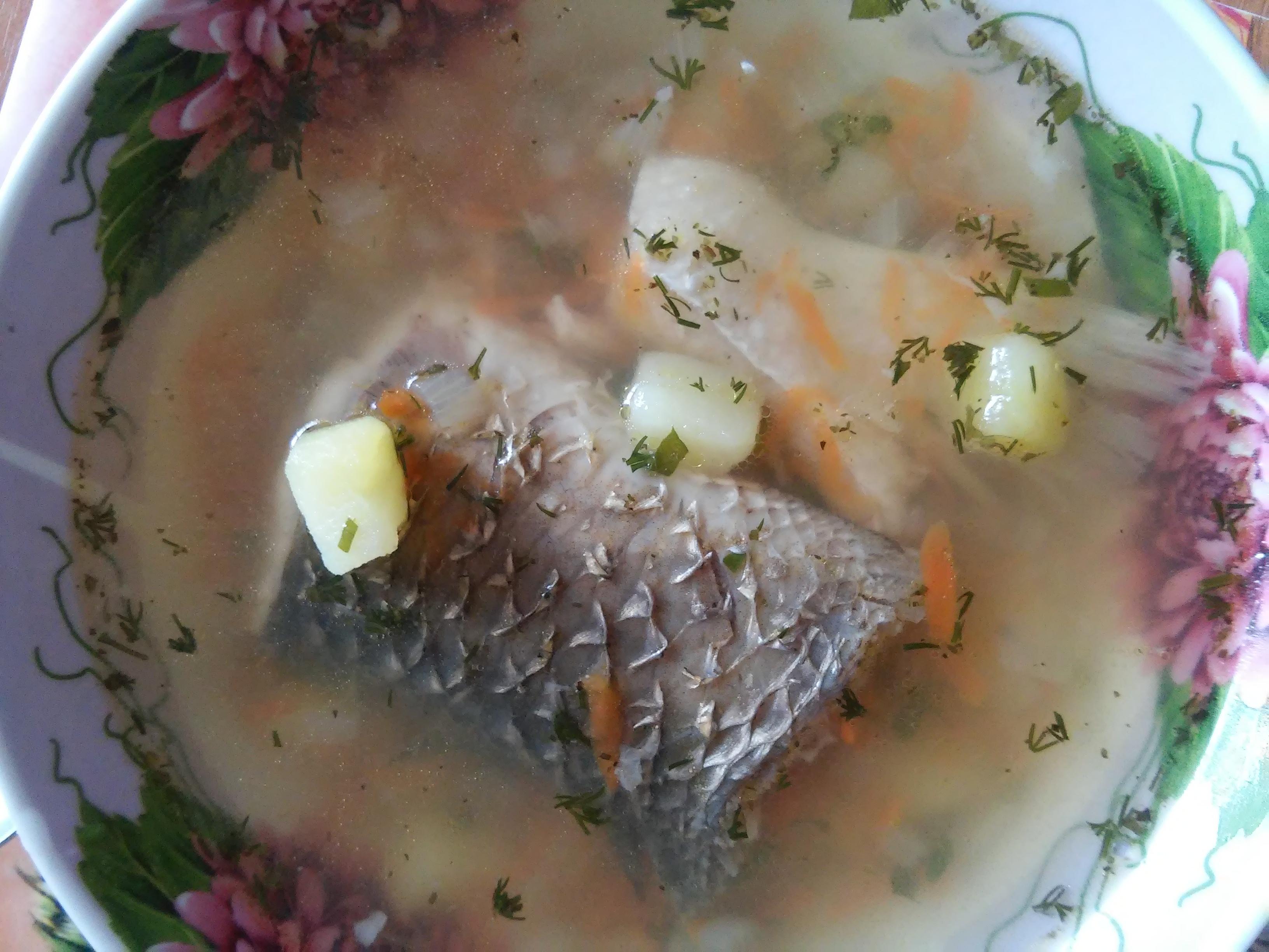 Суп из красной рыбы фото Из семгы